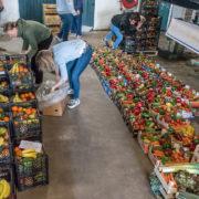 Markt 010 en Rotterdam Oogst weer open