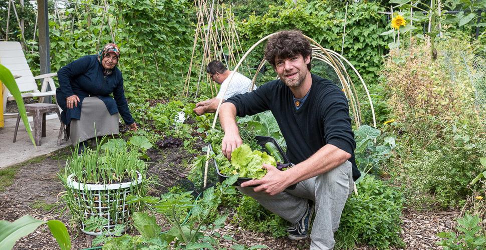 Groene vrijwilligers brengen verandering