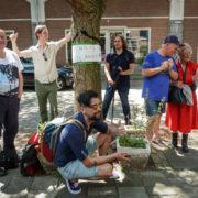 Bomenridder wordt door buurt omarmd