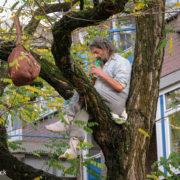 Mijn vader zit in de boom